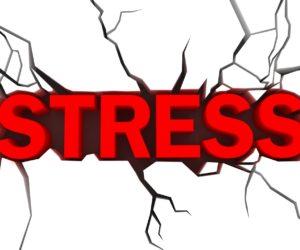 Stress, sao không hét một cái?