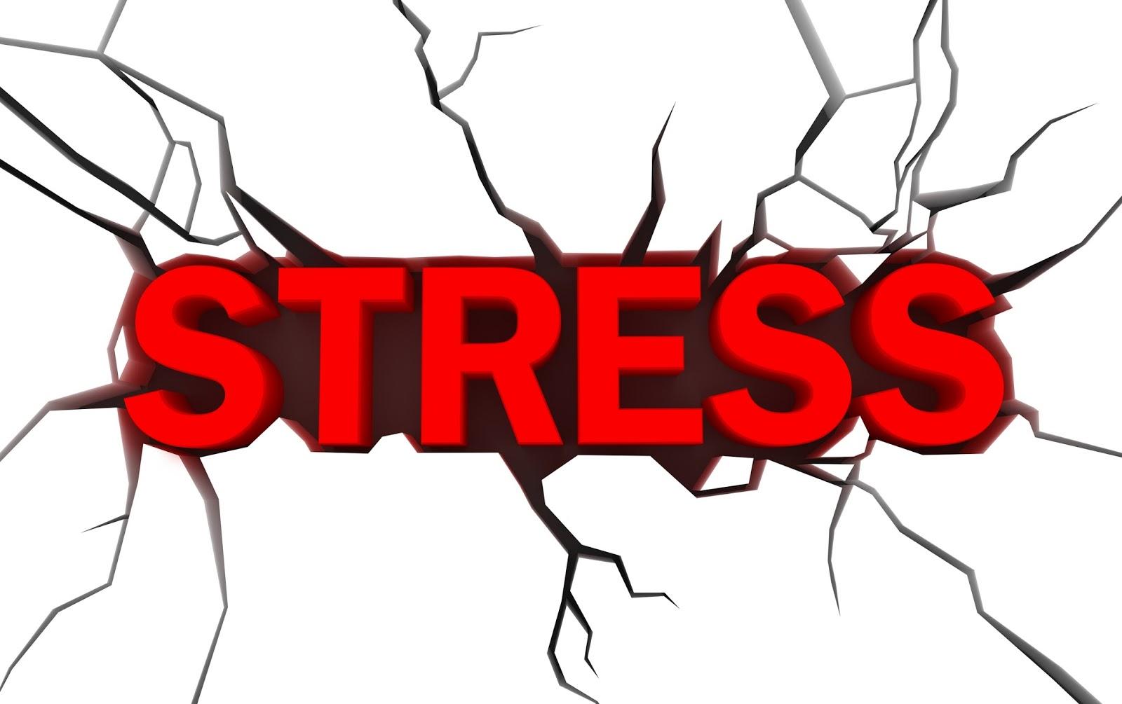 Stress, sao khA?ng hA�t ma��t cA?i?