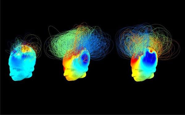 Những mức độ ý thức của con người (P1)