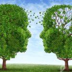 Chương trình đào tạo về liệu pháp trị liệu Nhận thức hành vi (CBT)